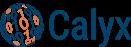 Calyx Servicios